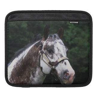 Appaloosa Horse Headshot 2 iPad Sleeve