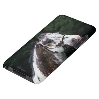 Appaloosa Horse Headshot 2 iPod Case-Mate Cases
