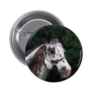Appaloosa Horse Headshot 2 Pinback Button