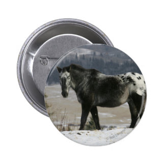 Appaloosa Horse in the Snow Button