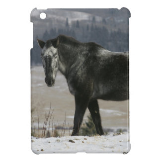 Appaloosa Horse in the Snow iPad Mini Case