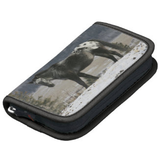 Appaloosa Horse in the Snow Organizers