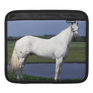 Appaloosa Horse iPad Sleeve