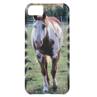Appaloosa Horse iPhone case + 9 more choices