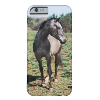 Appaloosa horse pose barely there iPhone 6 case