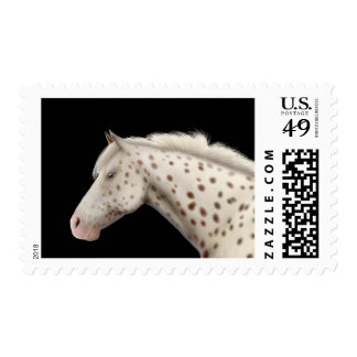 Appaloosa Horse Postage