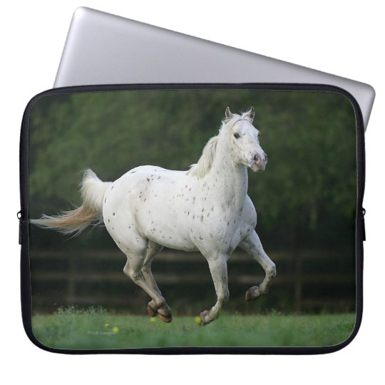 Appaloosa Horse Running 1 Computer Sleeves