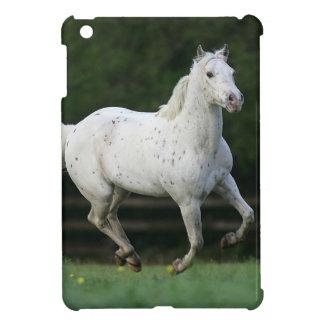 Appaloosa Horse Running 1 iPad Mini Case
