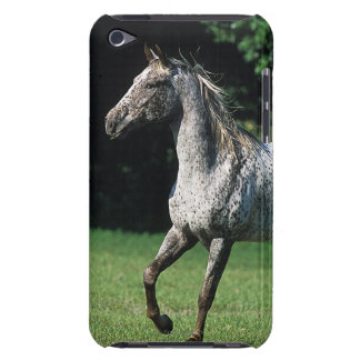 Appaloosa Horse Running 2 Case-Mate iPod Touch Case