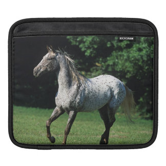 Appaloosa Horse Running 2 Sleeve For iPads