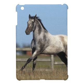 Appaloosa Horse Running 3 Case For The iPad Mini