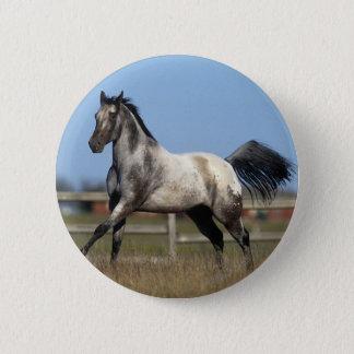 Appaloosa Horse Running 3 Pinback Button