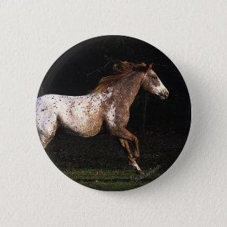 Appaloosa Horse Running 4 Button