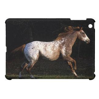 Appaloosa Horse Running 4 iPad Mini Cases