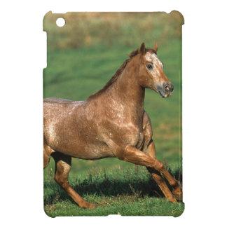 Appaloosa Horse Running in Grassy Field iPad Mini Cases
