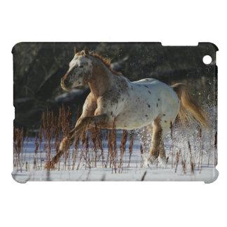 Appaloosa Horse Running in the Snow iPad Mini Covers