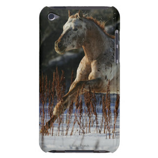 Appaloosa Horse Running in the Snow iPod Case-Mate Case