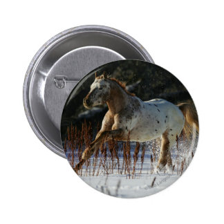 Appaloosa Horse Running in the Snow Pinback Button