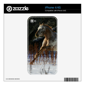 Appaloosa Horse Running in the Snow Skin For The iPhone 4