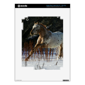 Appaloosa Horse Running in the Snow Skins For iPad 3