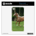 Appaloosa Horse Running Skins For iPhone 4
