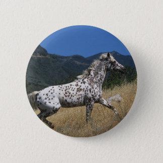 Appaloosa Horse Running up Mountain Pinback Button