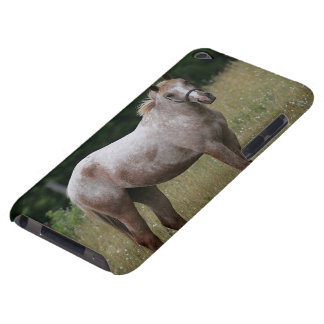 Appaloosa Horse Standing in the Grass iPod Case-Mate Cases