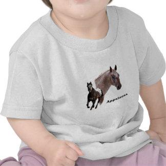 Appaloosa Horse Tee Shirts