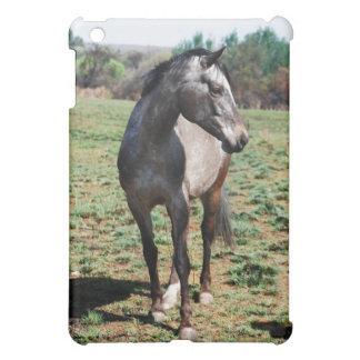 Appaloosa horses case for the iPad mini