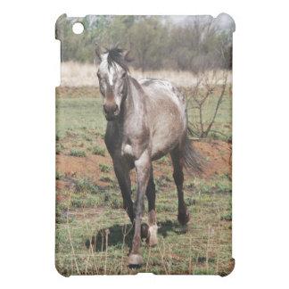 Appaloosa horses cover for the iPad mini