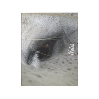 Appaloosa Horse's Eye Equine-lover's Notepad
