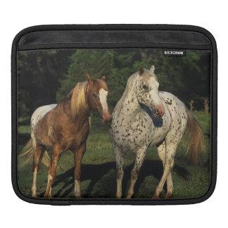 Appaloosa Horses iPad Sleeve