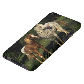 Appaloosa Horses iPod Touch Cases