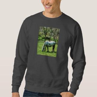 Appaloosa in Pasture Pullover Sweatshirt
