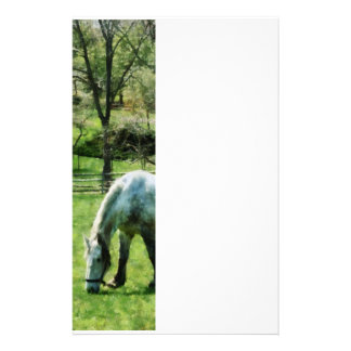 Appaloosa in Pasture Stationery