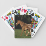 Appaloosa Mare And Foal Bicycle Playing Cards