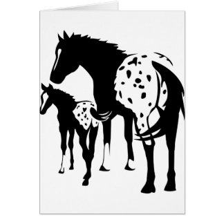 Appaloosa Mare and Foal Cards