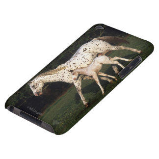 Appaloosa Mare And Foal in Field Barely There iPod Cases