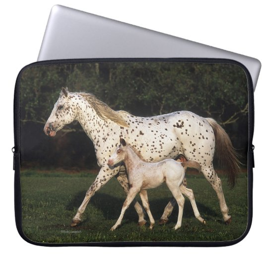 Appaloosa Mare And Foal in Field Computer Sleeve