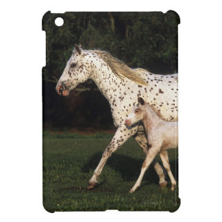 Appaloosa Mare And Foal in Field iPad Mini Case