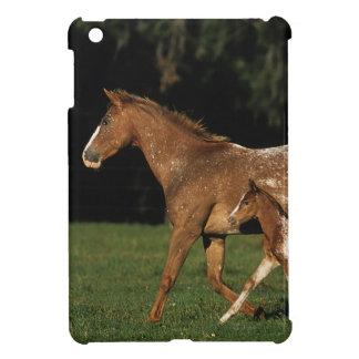 Appaloosa Mare And Foal iPad Mini Cover