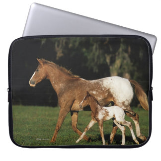 Appaloosa Mare And Foal Laptop Sleeve