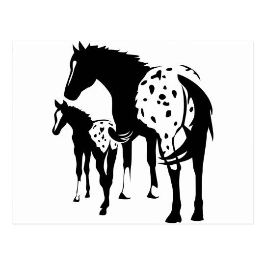 Appaloosa Mare and Foal Postcard