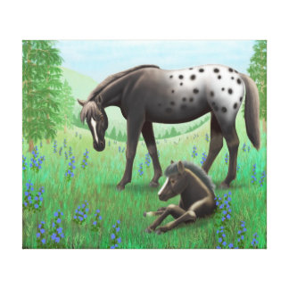 Appaloosa Mare and Foal Wrapped Canvas