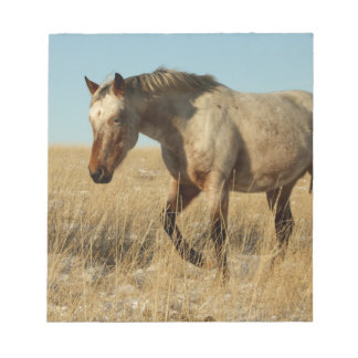 Appaloosa mare on the prairies notepad