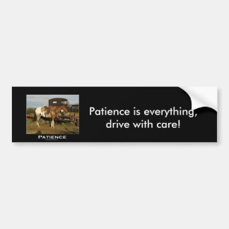 Appaloosa Motivational Gifts Bumper Sticker