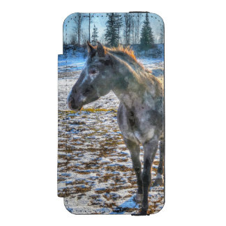 Appaloosa Stallion in the Snow Horse - Equine Art Wallet Case For iPhone SE/5/5s