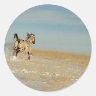 Appaloosa stallion Running Free Classic Round Sticker