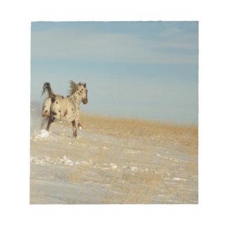 Appaloosa stallion Running Free Notepad