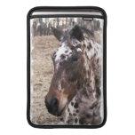 "Appaloosa Stallions 13"" MacBook Sleeve"